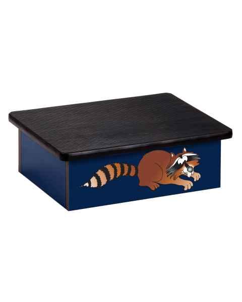 Clinton Pediatric Laminate Step Stool - Raccoon Graphic on Blue