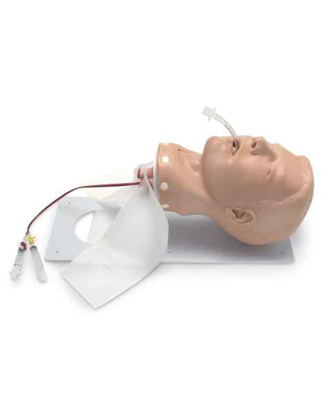 Simulaids Adult Deluxe Airway Management Trainer with Board