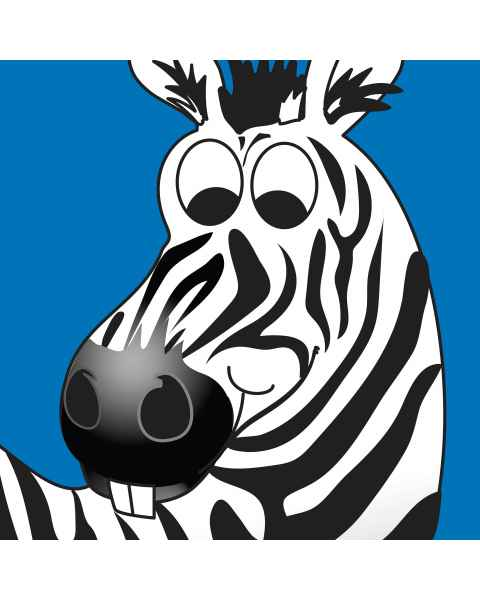 Clinton Wall Panel - Zebra