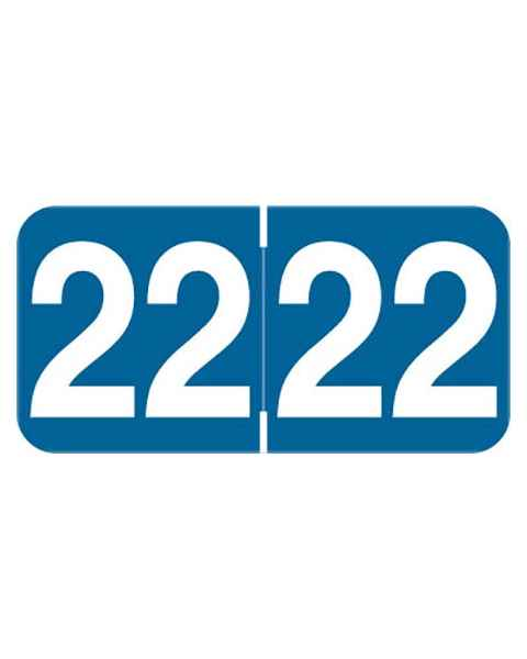 """2022 Year Labels - Ames Compatible - Size 3/4"""" H x 1 1/2"""" W"""