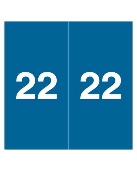 """2022 Year Labels - Ames Compatible - Size 1 7/8"""" H x 1 7/8"""" W"""