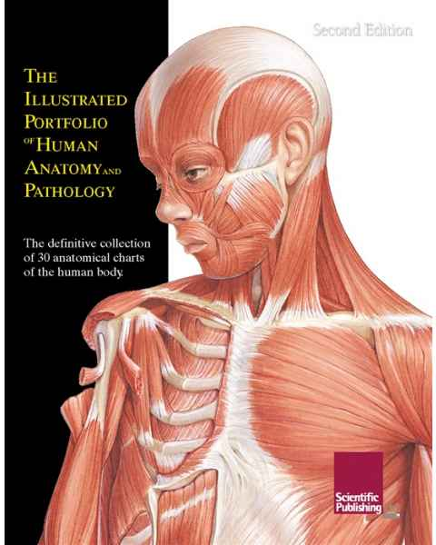 The Illustrated Portfolio of Human Anatomy & Pathology PHAP-30