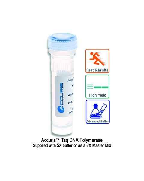 Accuris Taq DNA Polymerase