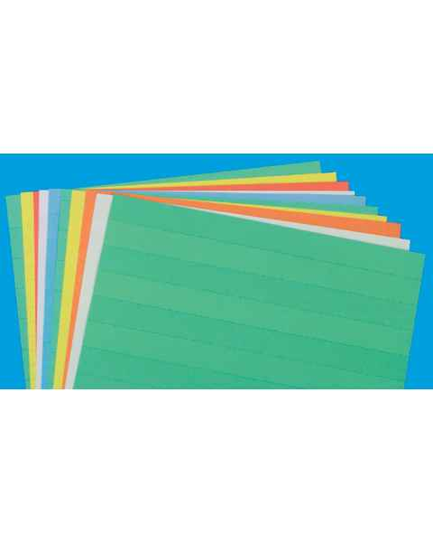 "Full Sheet Data Cards - 1"" H Perforated Line"