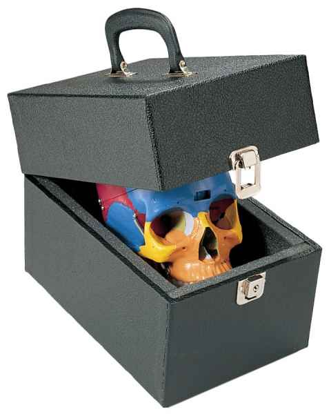 Skull Carrying Case