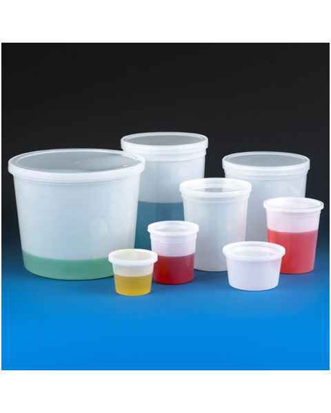 Economy Style Multi-Purpose Containers with Snap-On Lid - Translucent