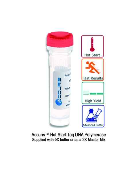 Accuris Hot Start Taq DNA Polymerase and Master Mix
