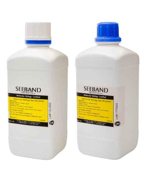 IBI Seeband Protein Stain