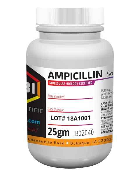 IBI Ampicillin Sodium Salt - 25g