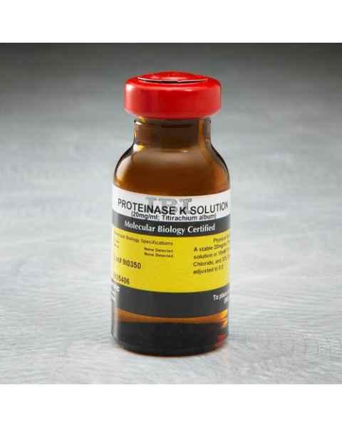 IBI Proteinase K Solution - 5mL