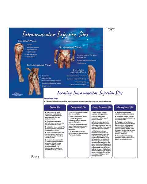 Life/form Intramuscular Injection Sites TearPad