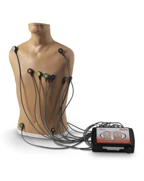 Life/form 15-Lead ECG Placement Trainer