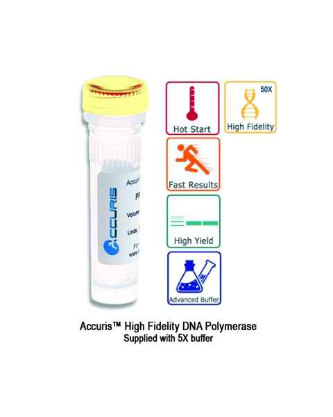 Accuris High Fidelity DNA Polymerase