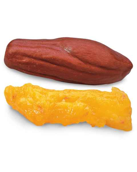 Life/form 5-lb. Fat and 5-lb. Muscle Replicas