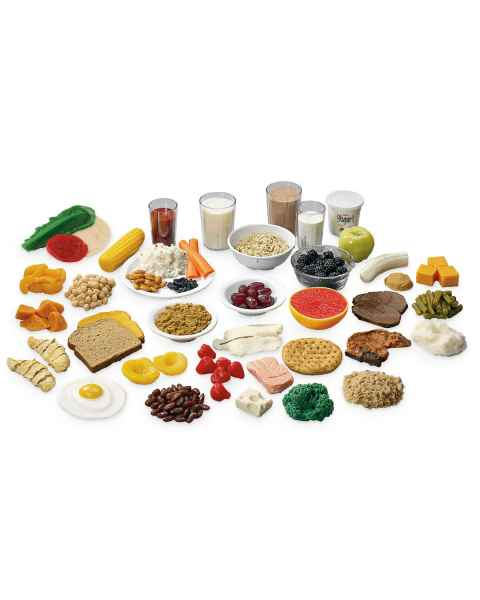 Life/form MyPlate Food Replica Kit