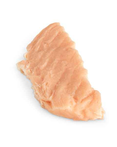 Life/form Salmon Food Replica - Poached