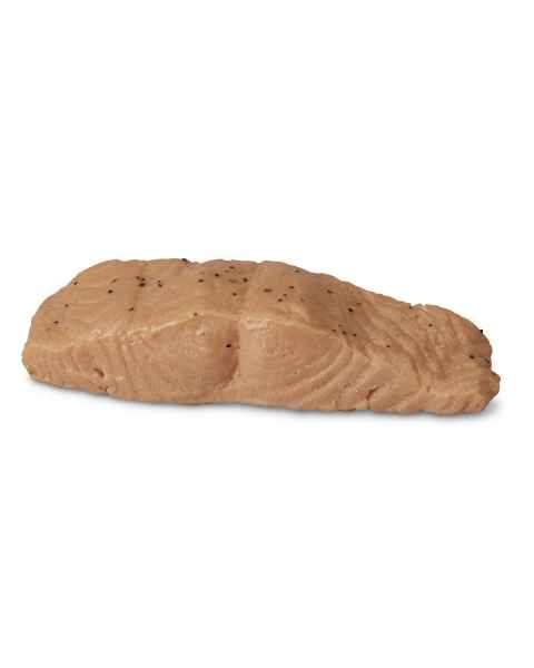 Life/form Salmon Food Replica - Broiled