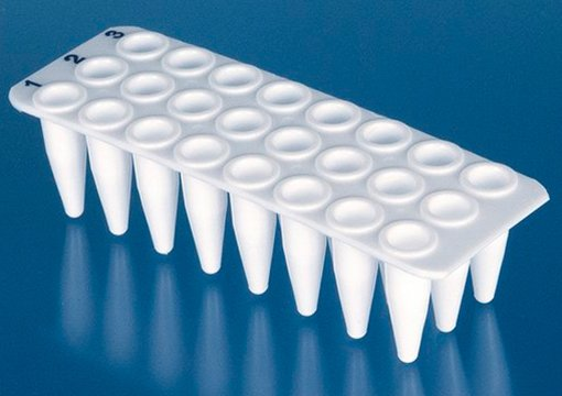 BRAND Polypropylene White 24-Well Real-Time PCR (qPCR) Plates 0.2mL - No Skirt (40 Plates)