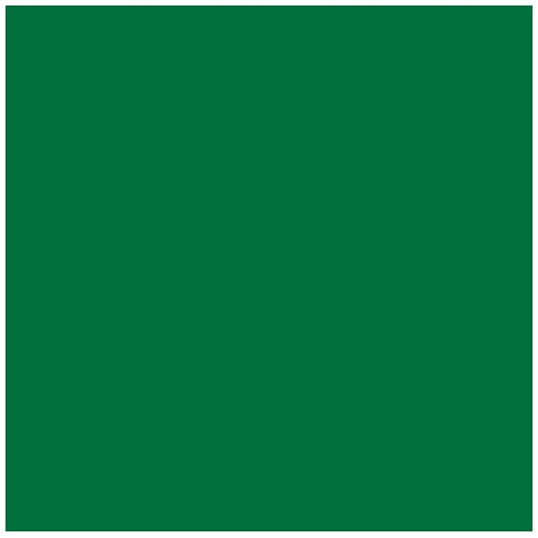 Ames L-A-00178 AMLP Series Solid Color Roll Labels - Green