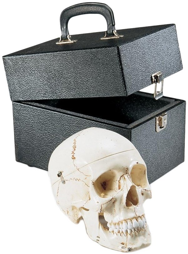 Special Edition Premier Skull with Locking Case