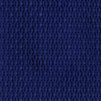 1-Piece Polypropylene Strap with Metal Roller Friction Buckle - 9' - Blue