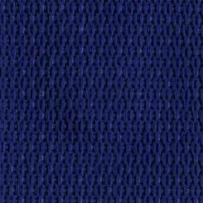 1-Piece Polypropylene Strap with Metal Drop Jaw Buckle - 9' - Blue