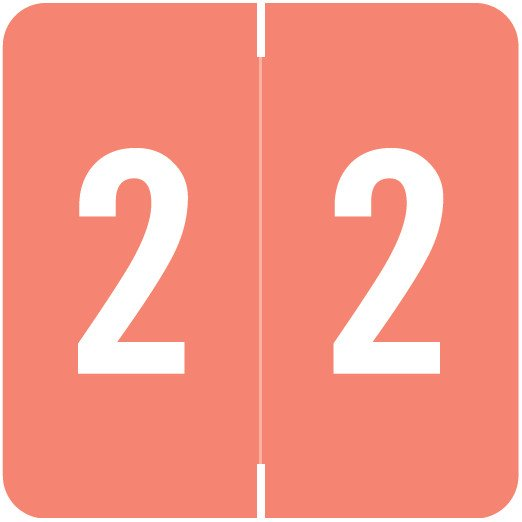 Smead/Barkley FNSDM Match SBNM Series Numeric Roll Labels - Number 2 - Pink