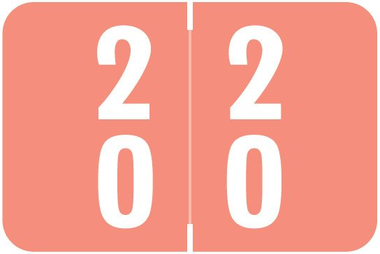 Smead DDS Match SMDM Series Numeric Roll Labels - Number 20 To 29 - Pink