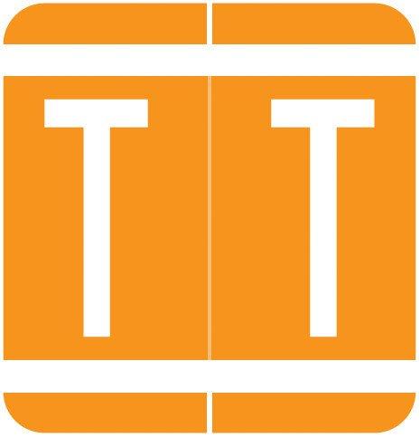 GBS 8848 Match VRPK Series Alpha Sheet Labels - Letter T - Orange