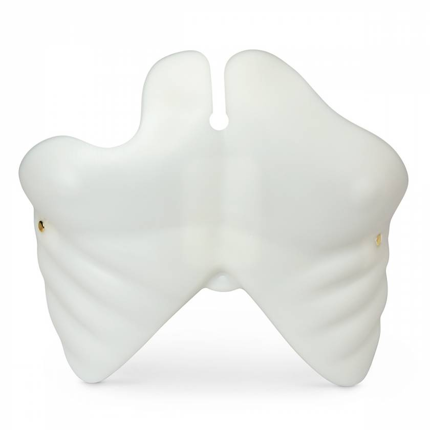 Simulaids Light Chest Plate for Brad and Paul