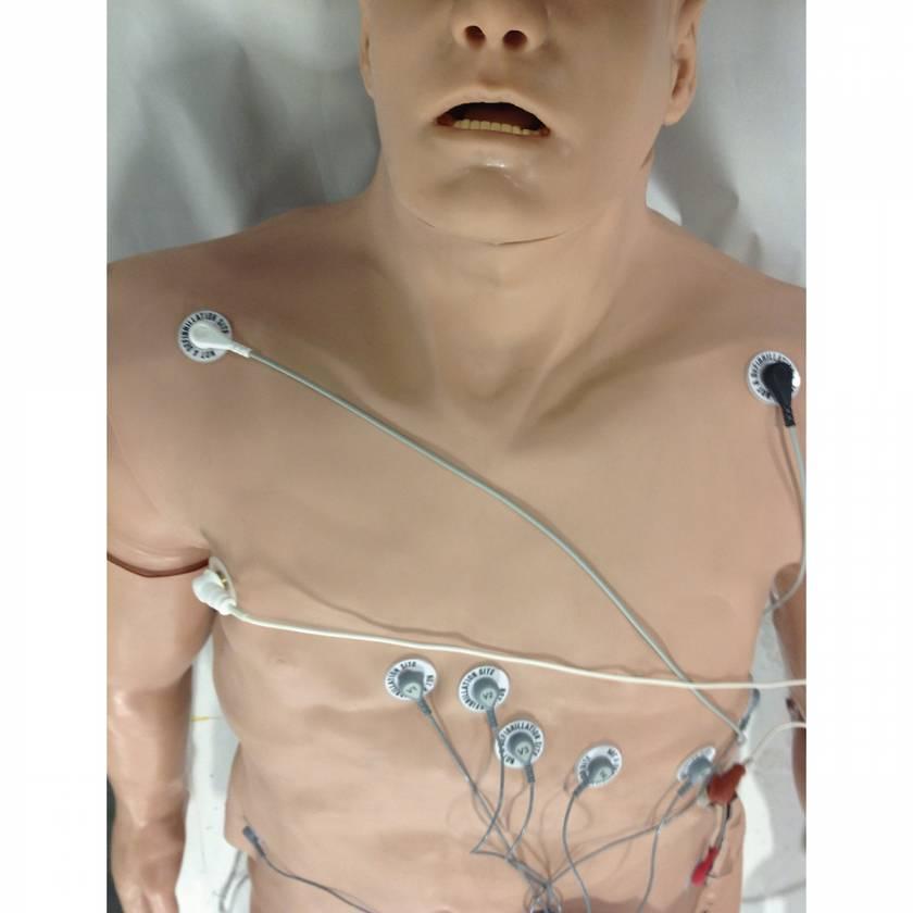 Simulaids 12-Lead Arrhythmia Simulator with Manikin Overlay - Zoll - Large