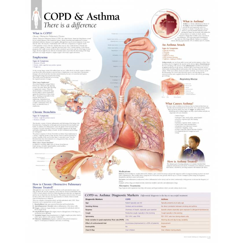 COPD & Asthma Chart