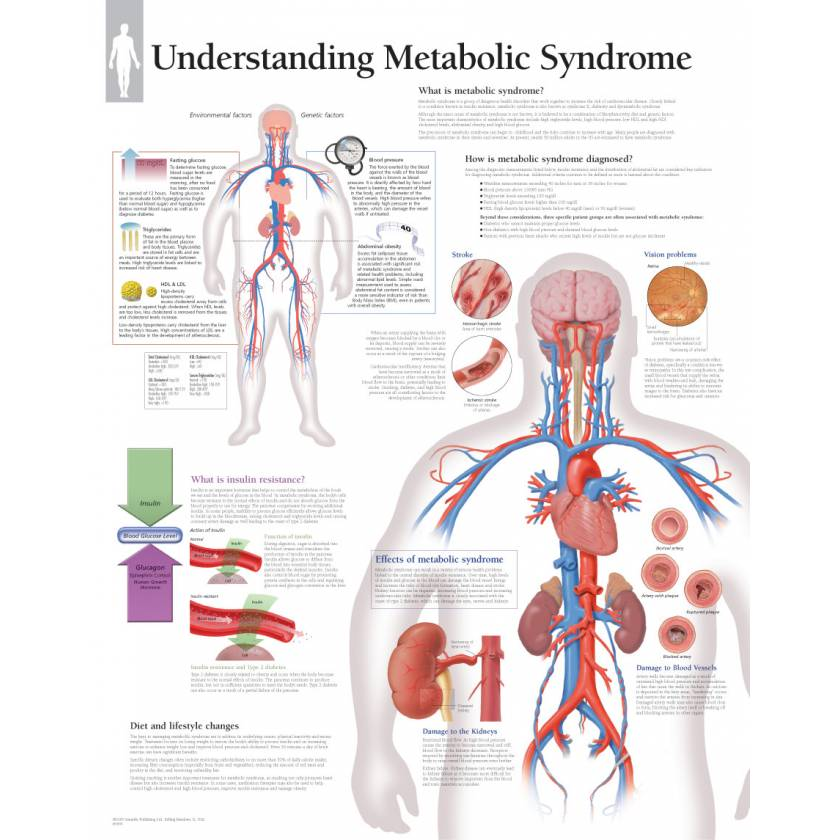 Understanding Metabolic Syndrome Chart
