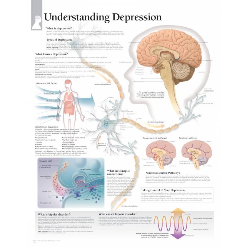 Understanding Depression Chart