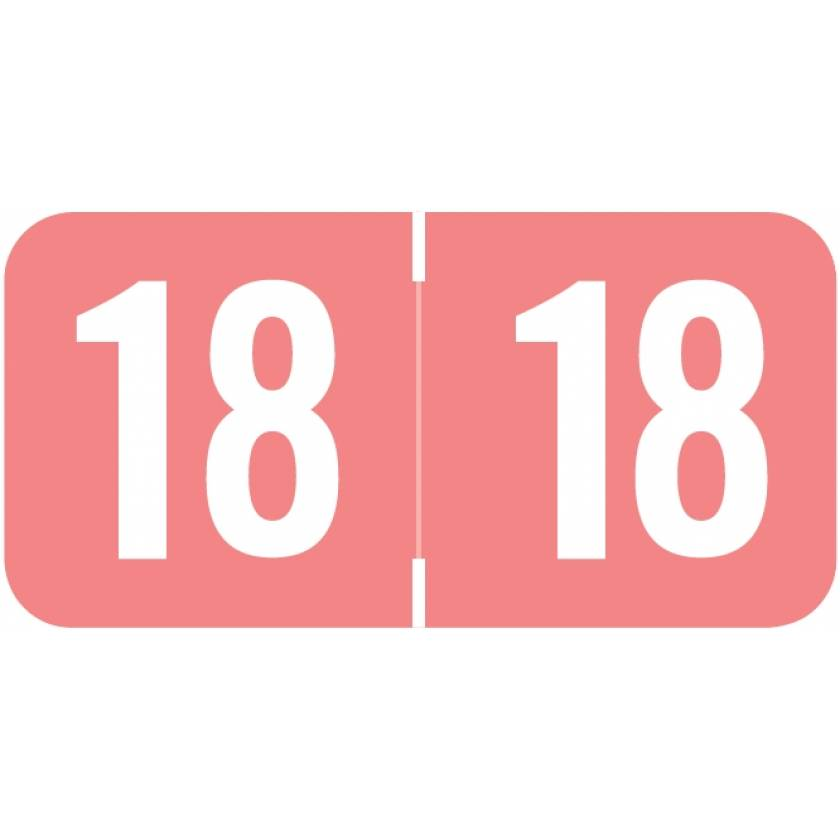 """2018 Year Labels - Sav-Tyme Compatible - Size 3/4""""H x 1 1/2""""W"""