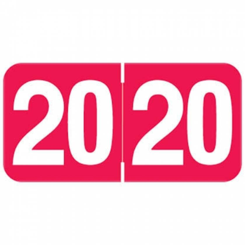 """2020 AAYM Year Labels - Ames Compatible - Size 3/4"""" H x 1 1/2"""" W"""