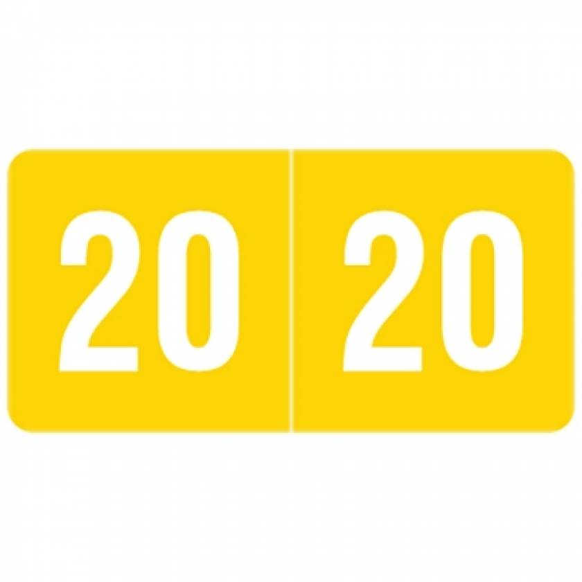 """2020 SMYM Year Labels - Smead Compatible - Size 1/2"""" H x 1"""" W"""