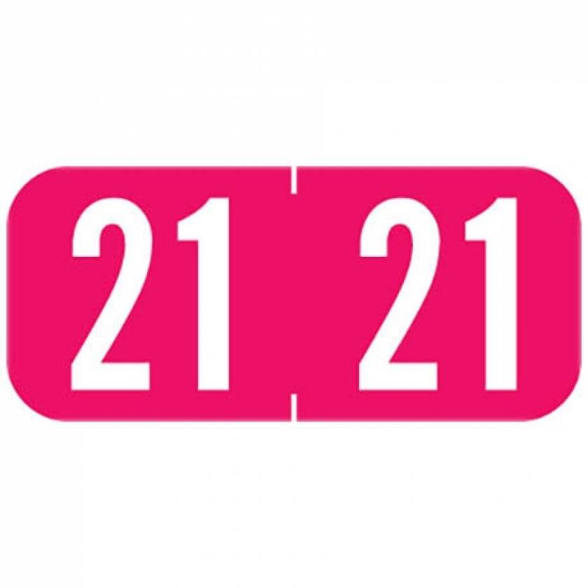 """2021 A1287 Year Labels - Tab 1287 Compatible - Size 1/2"""" H x 1 1/8"""" W"""