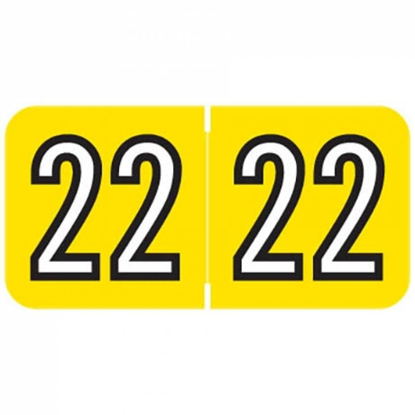 """2022 Year Labels - Barkley Compatible - Size 3/4"""" H x 1 1/2"""" W"""