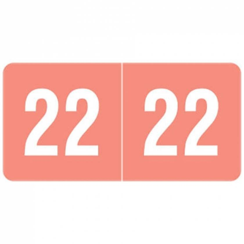 """2022 Year Labels - Smead Compatible - Size 1/2"""" H x 1"""" W"""