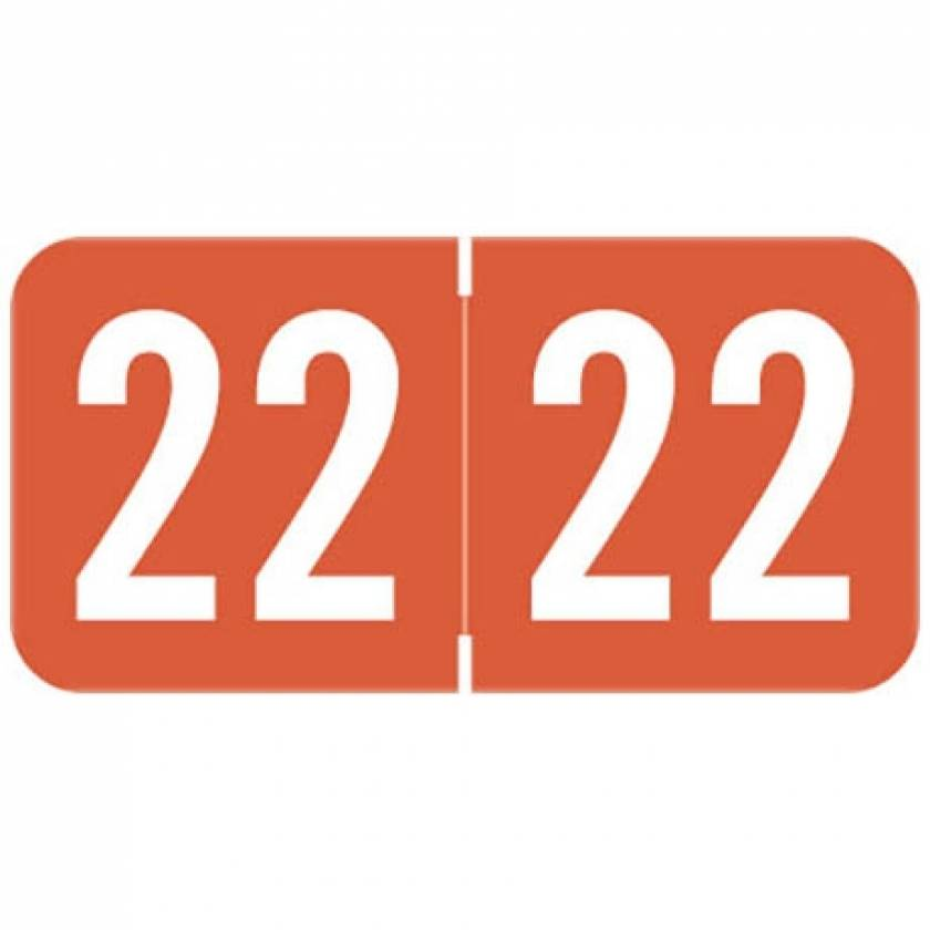 """2022 Year Labels - Sav-Tyme Compatible - Size 3/4"""" H x 1 1/2"""" W"""