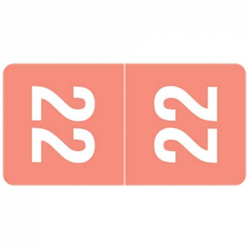 """2022 Top-Tab Year Labels - Smead Compatible - Size 1""""H x 1/2""""W"""