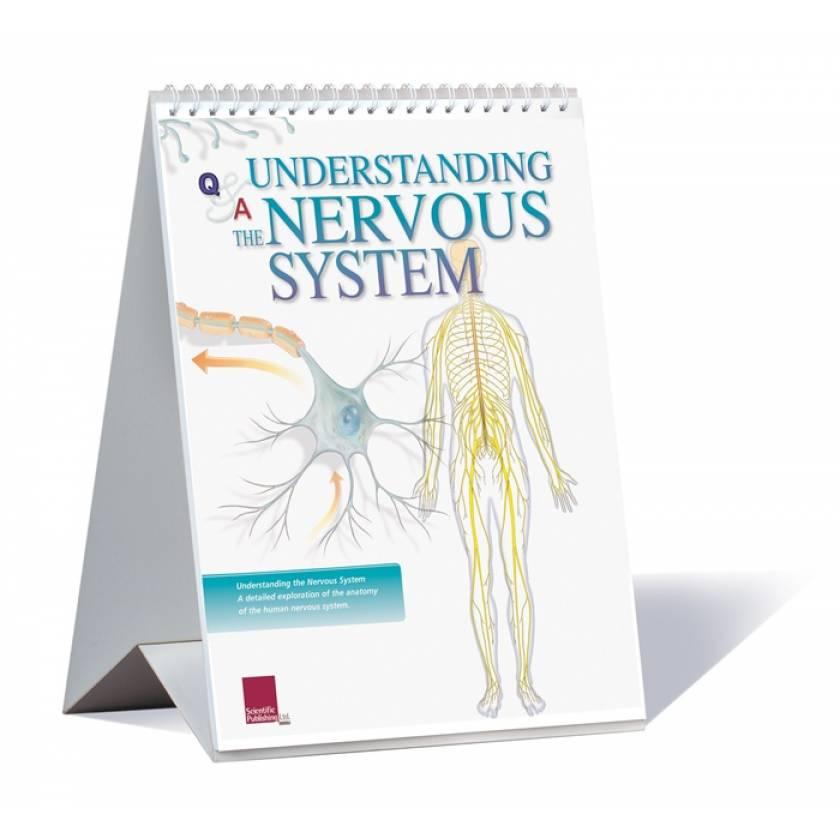 Understanding The Nervous System Flip Chart