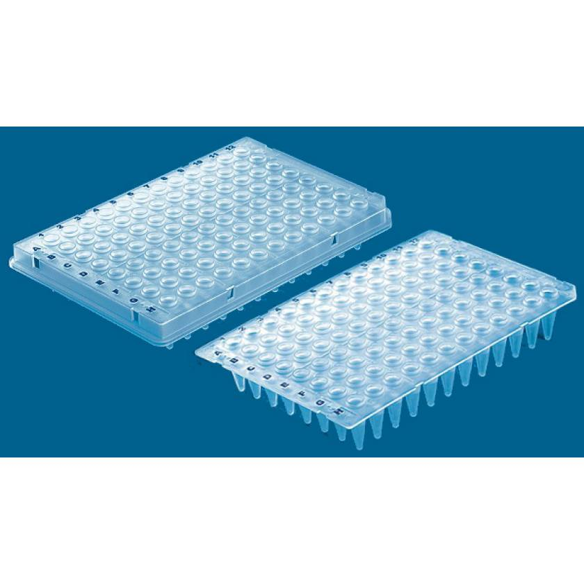 BRAND 96-Well PCR Plates - Polypropylene