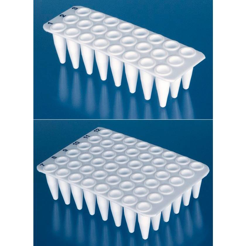 BRAND White 24- and 48-Well Real-Time PCR (qPCR) Plates - Polypropylene