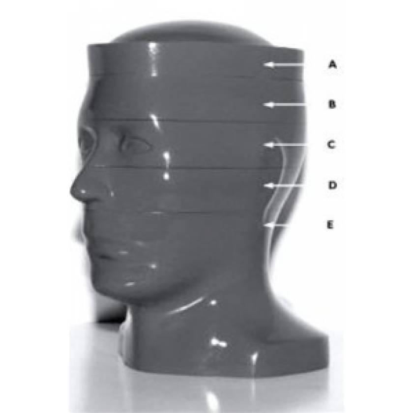 RSD Computed Tomography Head Phantom (5 Slices)