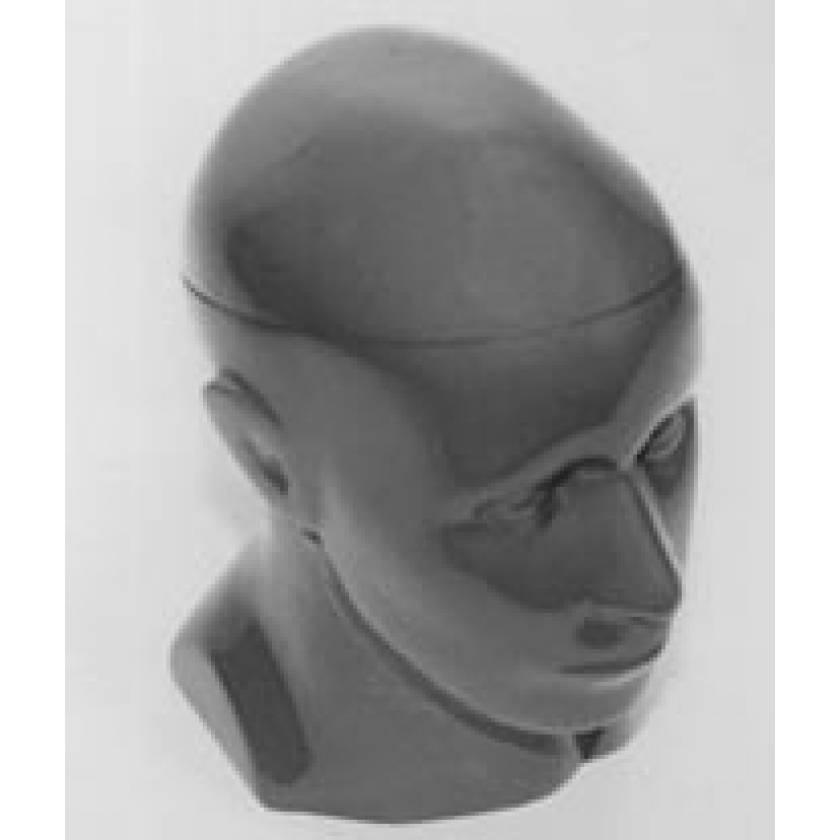 RSD Head Phantom  for Stereotactic Surgery