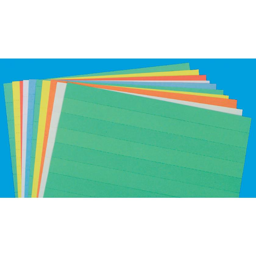 """Full Sheet Data Cards - 3/4"""" H Perforated Line"""