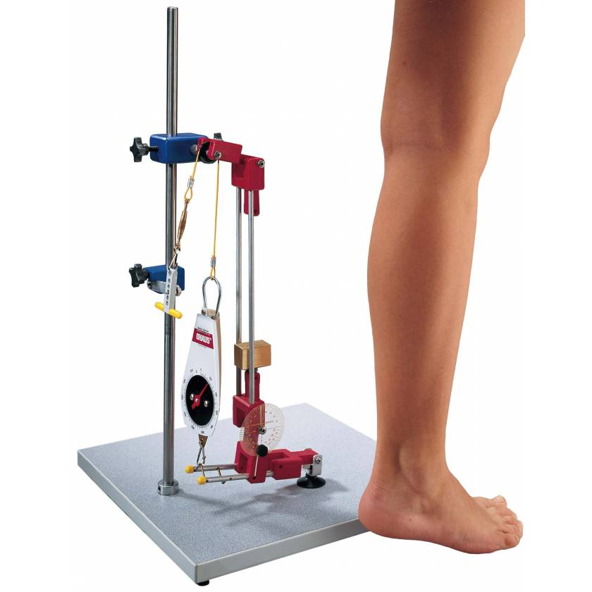 Biomechanical Leg Kit