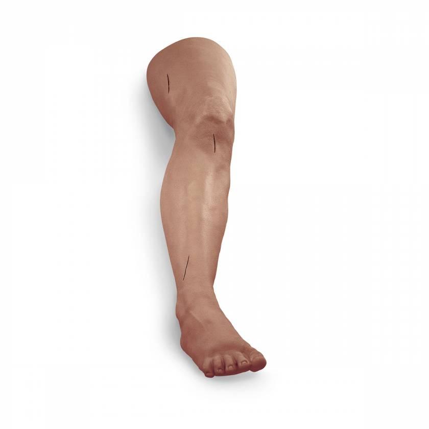 Life/form Suture and Stapling Practice Leg - Medium